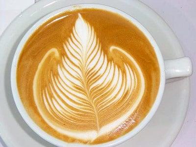 Fertile Grounds Café